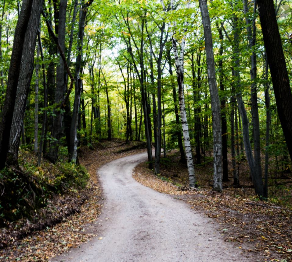 """""""A Liberal Religious Path: An Introduction to Unitarian Universalism"""""""